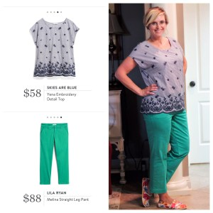 Skies are Blue top, Lila Ryan pants from Stitch Fix