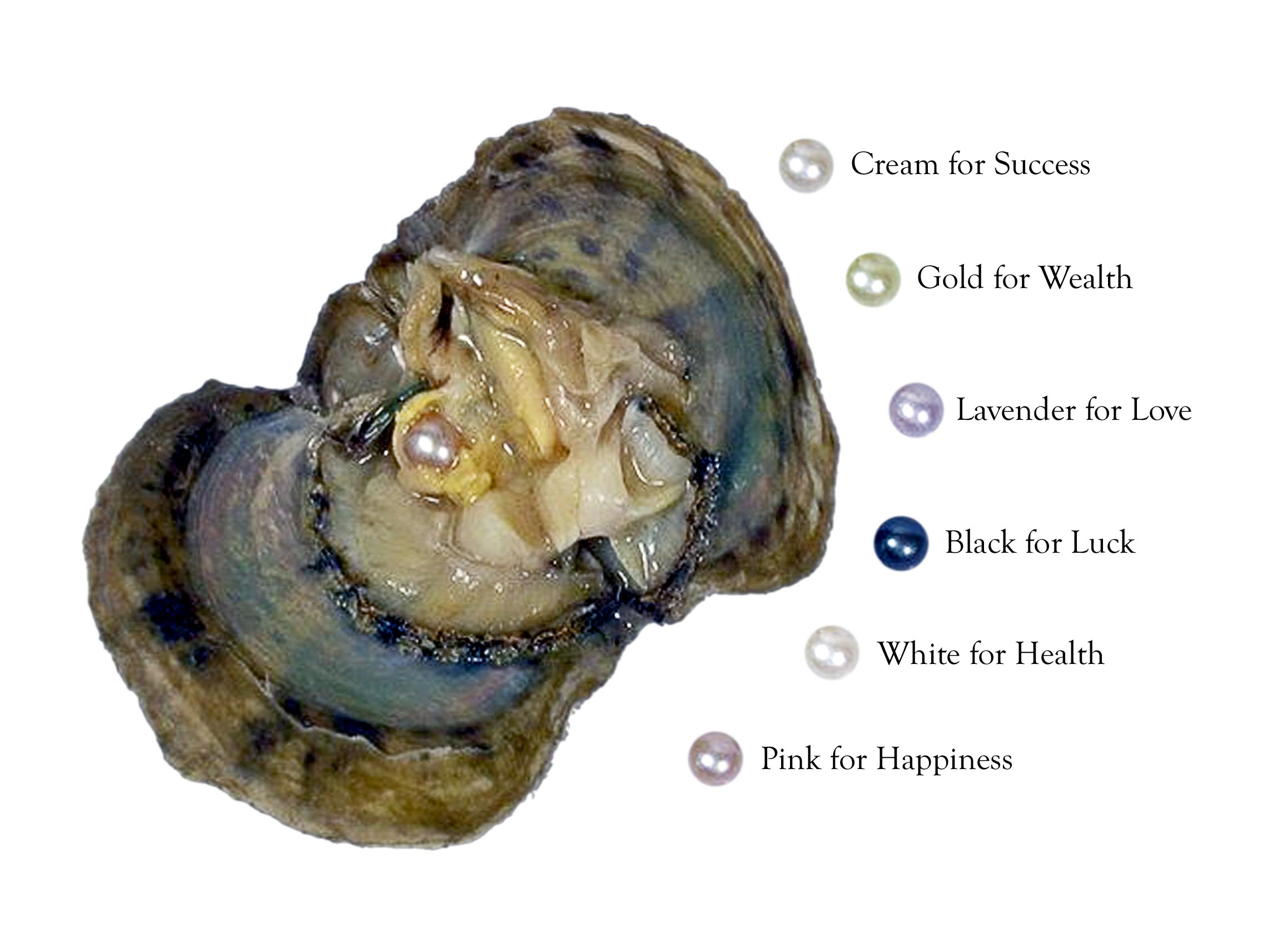 Wish Pearl In Oyster