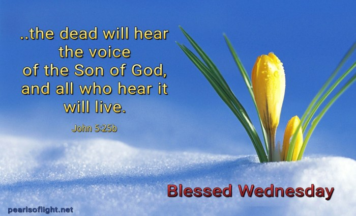 All who hear will live (BL)
