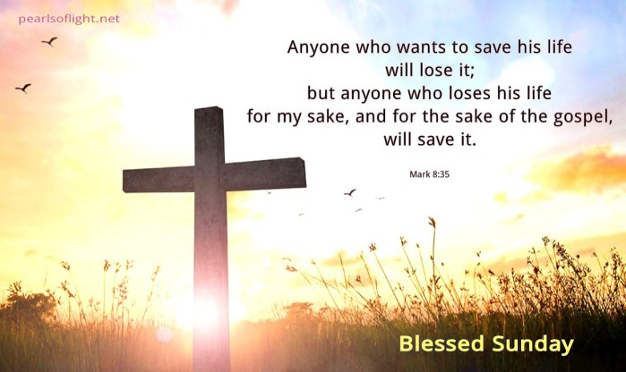 Anyone who loses his life for Jesus… (BL)