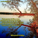 Blessed is the one who does not walk in step with the wicked…