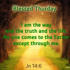 I am the way and the truth and the life. No one comes to the Father except through me.