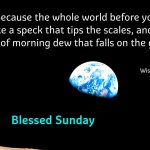 Because the whole world before you is like a speck that tips the scales…