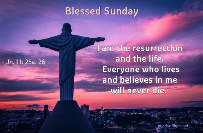 I am the resurrection and the life.  Everyone who lives and believes in me will never die.