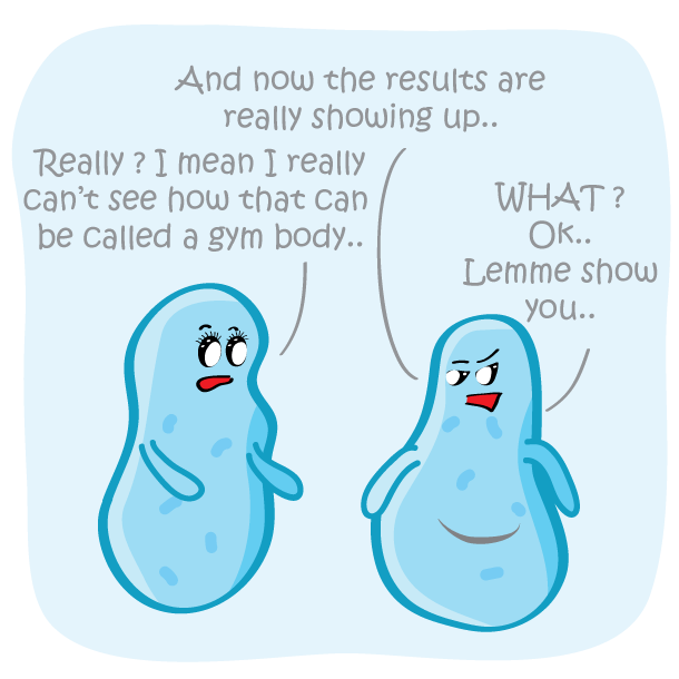 Gym Body Funny