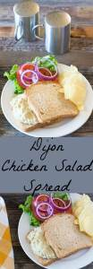 Chicken salad spread highlighting Dijon mustard. Lower fat and calories than traditional chicken salad.
