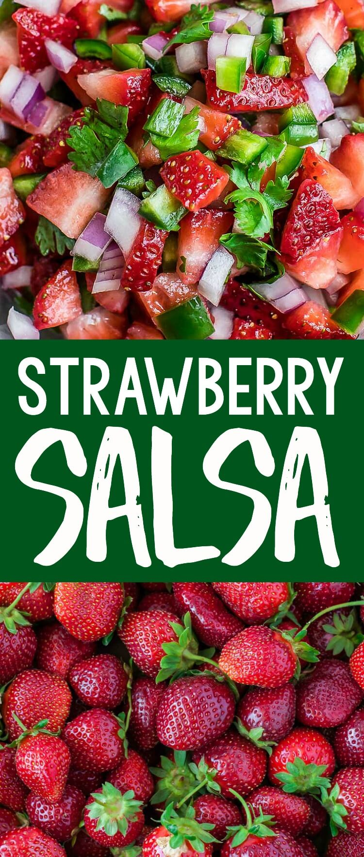 Strawberry Salsa Collage
