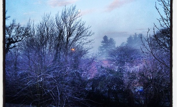 A frozen morning. #winter #arborfield #frost #ice