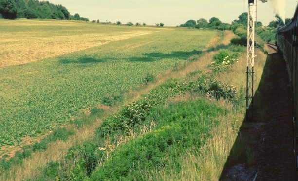 From a railway carriage #steam #train #midhants