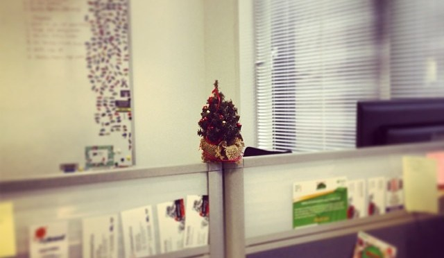 That's the office decorated for #Christmas