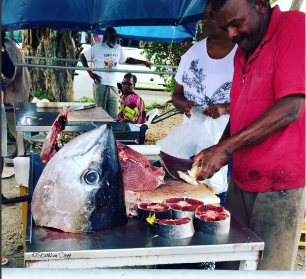 10 Things You Will See on Your Visit Martinique