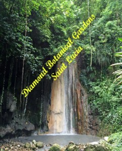 Diamond Botanical Gardens Saint Lucia Diamond Waterfall pebblepirouette.com #caribbean #saintlucia #botanicalgardens #flowers #tropicalflowers #diamondwaterfall
