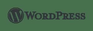 WordPress ile sitenizin hemen kurun