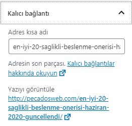 WordPress kalıcı bağlantı slugname