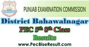 2017 Result Five Eight Class Bahawalnagar