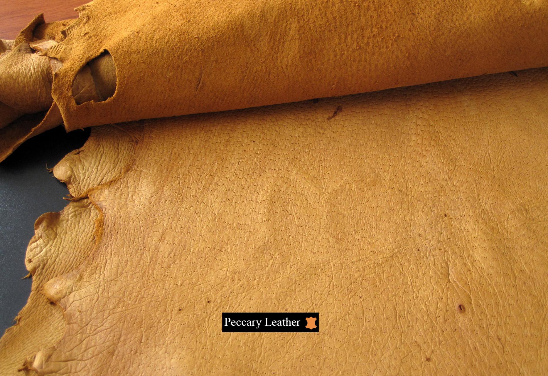 Peccary Leder in Farbe