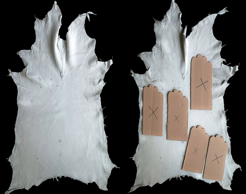 grade ii - peccary skins for gloves