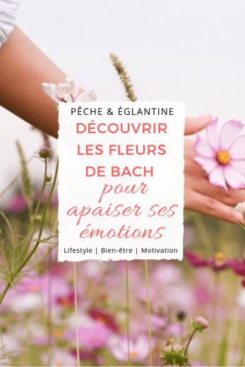 Gérer ses émotions naturellement avec les fleurs de Bach - Apprendre à apaiser son mental - Pêche & Églantine