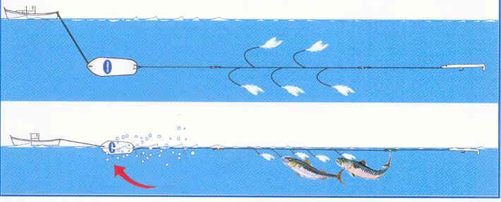 pêche à la traîne avec planchette