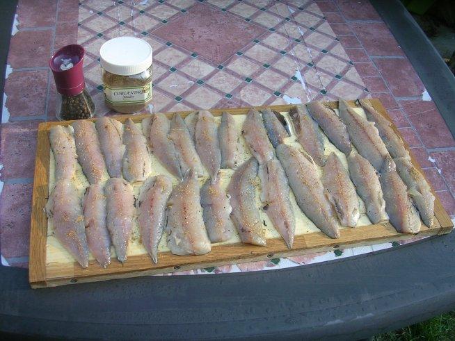 préparation de filets de maquereaux pour fumer