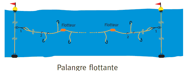 Palangre flottante