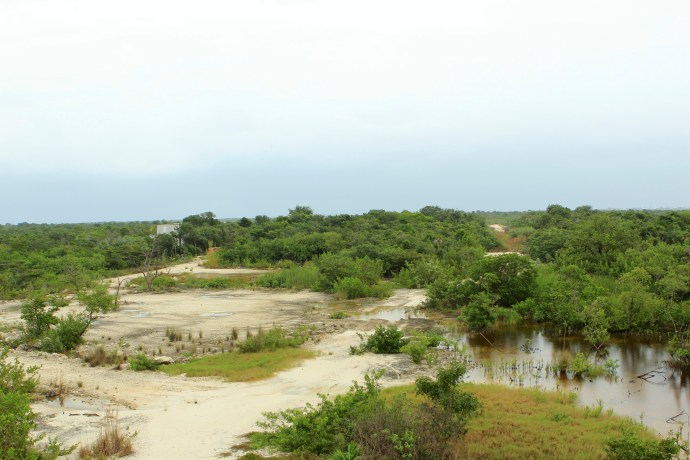 View from observation tower.