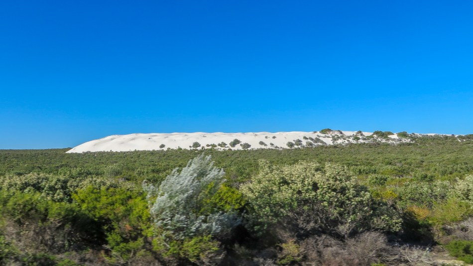 Mobile Sand Dunes