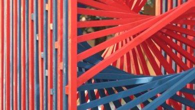 Photo of Az op-artot népszerűsítették installációjukkal a PTE építész hallgatói