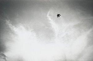 "Felix Gonzalez-Torres: ""Untitled"" (1992/1993)"