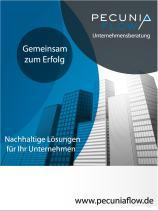 Pecunia Flow Unternehmensberatung Dennis Kahl Münster Flyer Dienstleistungen kompakt
