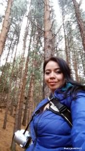 Bosque Bogotano