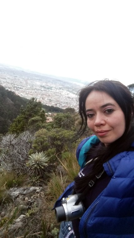 Frailejones a escasos kilometros de Bogotá