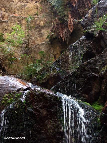 Quebrada Las Delicias parte superior