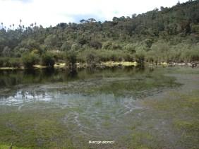 Laguna Charrascales 2