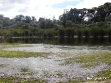 Laguna Charrascales