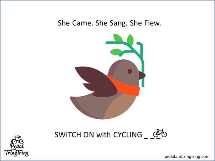 switch on with cycling2