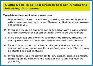 GuideDogs Cycleyes - 5 points