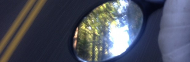 bike touring redwoods in mirror