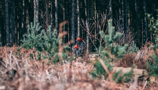 Greno Woods | Orbea Test Ride Video