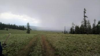 Perma-rain.