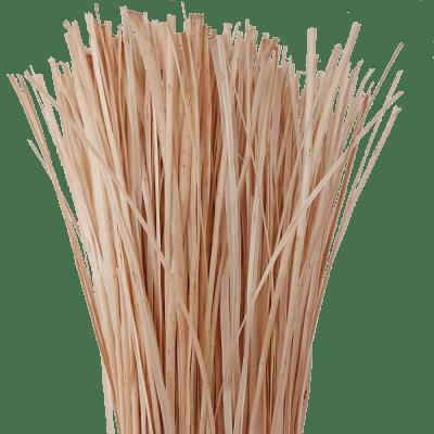 Flechtweide Weidenschiene Weide Schiene weiß geschält