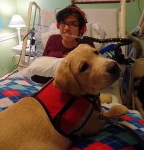 Canine Therapy PSC