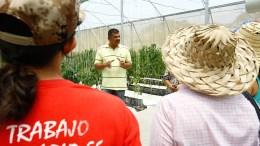 Abasteciendo al pueblo Ejecutivo sembrará más de 2 millones de hectáreas de alimentos - ¡Abasteciendo al pueblo! Ejecutivo sembrará más de 2 millones de hectáreas de alimentos