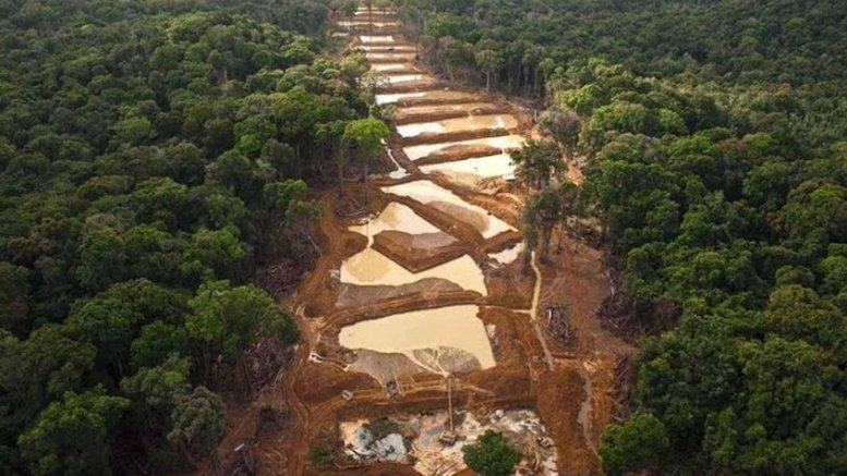 Arreaza Pequeños mineros son fundamentales para desarrollo del Arco - Arreaza: Pequeños mineros son fundamentales para desarrollo del Arco