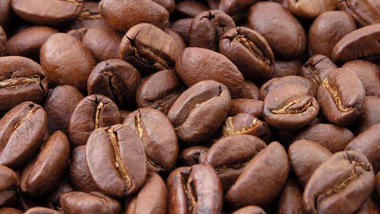 Venezuela evalúa exportar frutas y café a Rusia - Venezuela evalúa exportar frutas y café a Rusia
