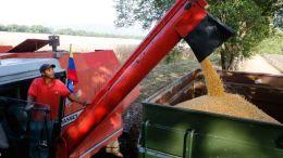 Consorcio Agrosur nace para potenciar la producción nacional - Consorcio Agrosur nace para potenciar la producción nacional