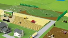 Blockchain revoluciona la agricultura inteligente - Blockchain revoluciona la agricultura inteligente