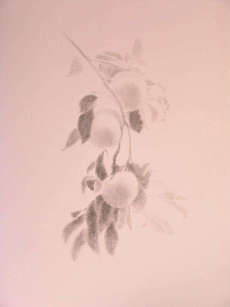 Imagen 1718