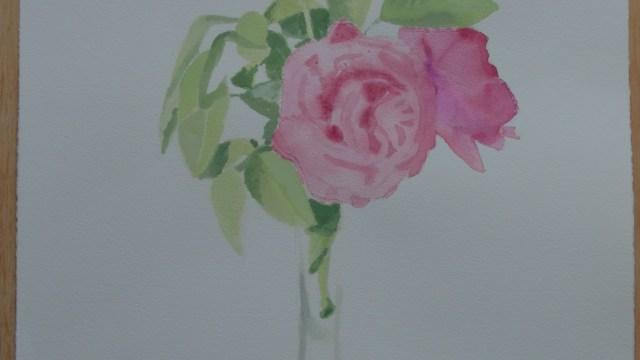 """""""Rosa amarilla y rosa rosa"""""""