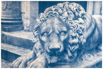 Cianotipia. León de Piedra Positivado manual con luz solar.